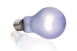 Неодимовая лампа дневного света - Exo-Terra Daytime Heat Lamp - A21 / 150 Вт - арт.: PT2114
