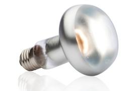 Лампа для баскинга - Exo-Terra Intense Basking Spot - S25 / 100 Вт - арт.: PT2138