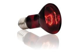 Инфракрасная лампа - Exo-Terra Infrared Basking Spot - R20 / 75 Вт - арт.: PT2142