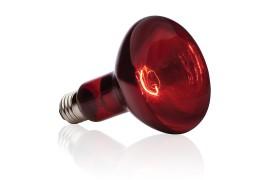 Инфракрасная лампа - Exo-Terra Infrared Basking Spot - R30 / 150 Вт - арт.: PT2146