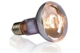 Влагоустойчивая лампа для черепах - Exo-Terra Swamp Basking Spot - R20 / 50 Вт - арт.: PT3780