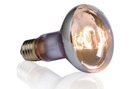 Влагоустойчивая лампа для черепах - Exo-Terra Swamp Basking Spot - R20 / 75 Вт - арт.: PT3781