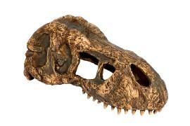 """Мини-укрытие """"Череп тираннозавра"""" - Exo-Terra T-Rex Skull - арт.: PT2860"""