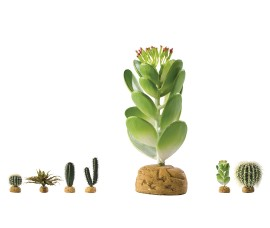 Растение иск. - Exo-Terra Desert Ground Plants - Jade Cactus - арт.: PT2984