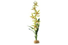 Растение иск. - Exo-Terra Rainforest Ground Plants - Spider Orchid - арт.: PT2991