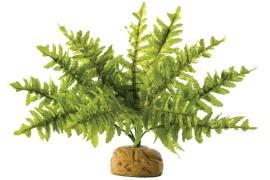 Растение иск. - Exo-Terra Rainforest Ground Plants - Boston Fern - Small - арт.: PT2990