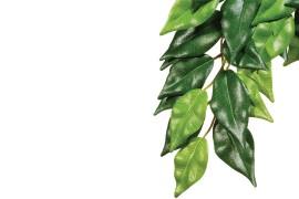 Растение иск. - Exo-Terra Hanging Rainforest Plants - Ficus (Silk) - Small - 45 x 20 см - арт.: PT3030