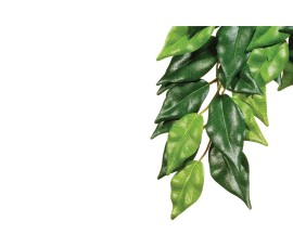 Растение иск. - Exo-Terra Hanging Rainforest Plants - Ficus (Silk) - Small - 45 x 20 см - арт.: PT3030