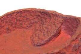 Кормушка-поилка - JBL ReptilBar Red XS - 6 x 4 x 1 см - красная - арт.: 7107600