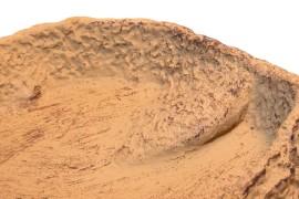 Кормушка-поилка - JBL ReptilBar Sand S - 9 x 7,5 x 1,5 см - песочная - арт.: 7108300