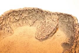 Кормушка-поилка - JBL ReptilBar Sand M - 13 x 11 x 3,5 см - песочная - арт.: 7108400