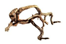 Коряга из виноградной лозы (нат.) - арт.: YP-0235