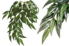 Растение иск. - Exo-Terra Hanging Rainforest Plants - Ruscus, Silk, Medium, 55 x 20 см
