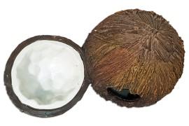 Поилка и укрытие в виде кокосов - Exo-Terra Cocount Hide & Water Dish - 21 x 12 x 12 см